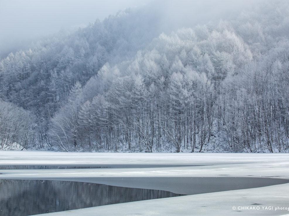 © CHIKAKO YAGI Photography